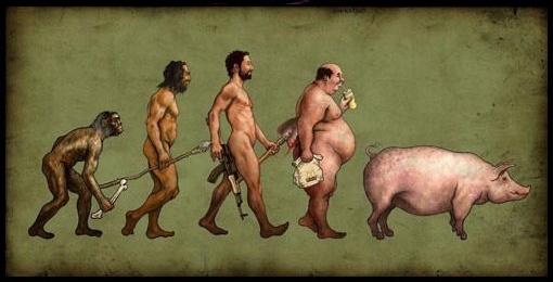 evolution-porcherie